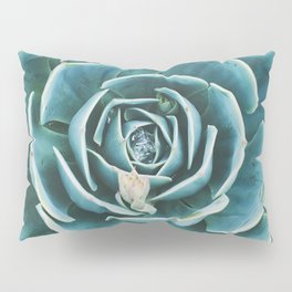 desert. echeveria Pillow Sham