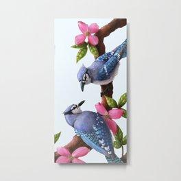 Blue Jays on a Dogwood Branch Metal Print