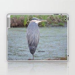 Blue Heron at Hillsboro Pond Laptop & iPad Skin