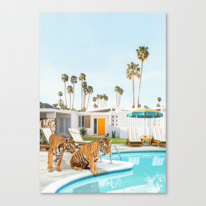Tigers at the Pool Canvas Print