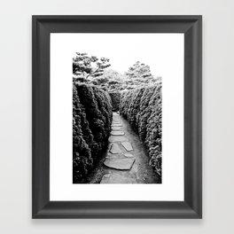 Paths Framed Art Print