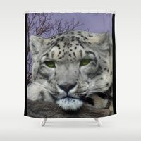 snow leopard Shower Curtains featuring Snow Leopard by SwanniePhotoArt