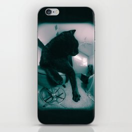 Cat Glance iPhone Skin