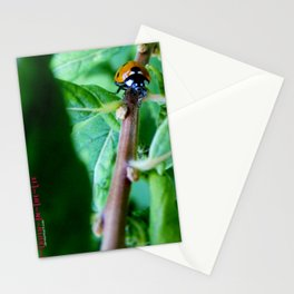 The long climb Stationery Cards