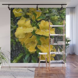 Cat's Claws Vines Wall Mural