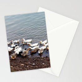 A Flock of ducks on the Mekong River Bank Stationery Cards