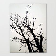 Fell In Fall Canvas Print