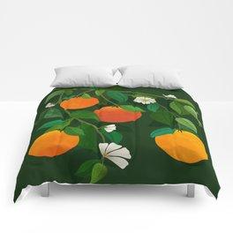 Oranges and Blossoms / Botanical Illustration Comforters
