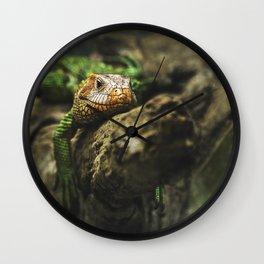 Lazy Lizard Wall Clock