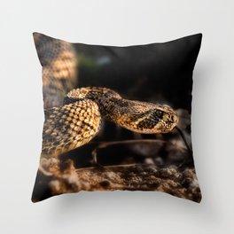 Rattlesnake-II Throw Pillow