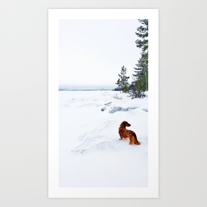 Dachshund and winter landscape with snow Art Print