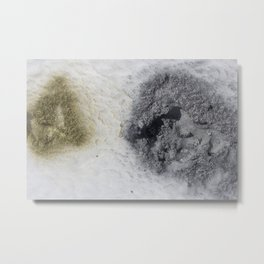 Gold and Silver Spray Paint in the Snow Metal Print