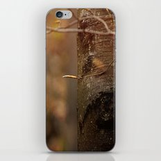 Begin iPhone & iPod Skin