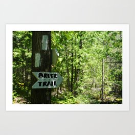BRUCE TRAIL Art Print