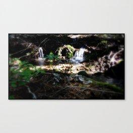 Natural Pool Canvas Print