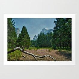 Yosemite-Half Dome Art Print