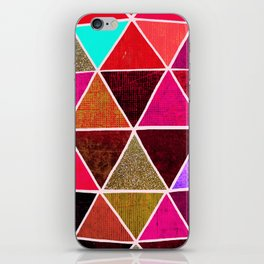 Geodesic 4 iPhone Skin