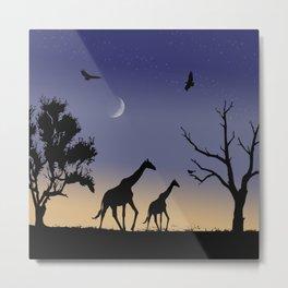 African dawn - giraffes Metal Print