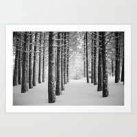 Hometown Pine Art Print