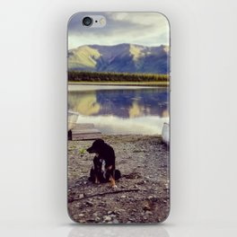 Alaska is Better with a Dog iPhone Skin