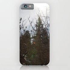 Winter Sun iPhone 6s Slim Case