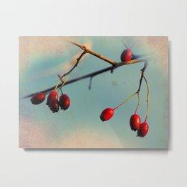 Berries Metal Print