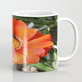 Close Up of a Beautiful Terracotta Gazania Flower Coffee Mug