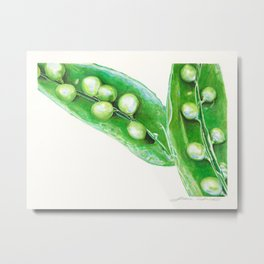 Watercolor Peas Metal Print