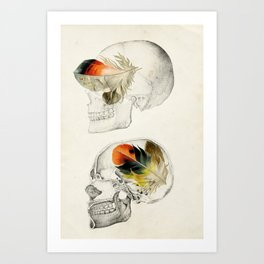 Feathers In My Head Art Print
