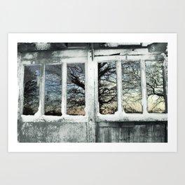 Broken windows Art Print
