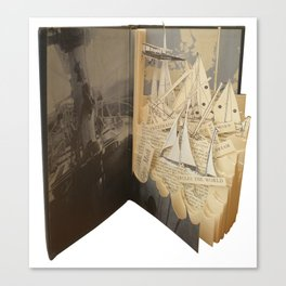 Gipsy Moth Canvas Print