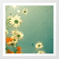 daisy Art Prints featuring Daisy by Cassia Beck