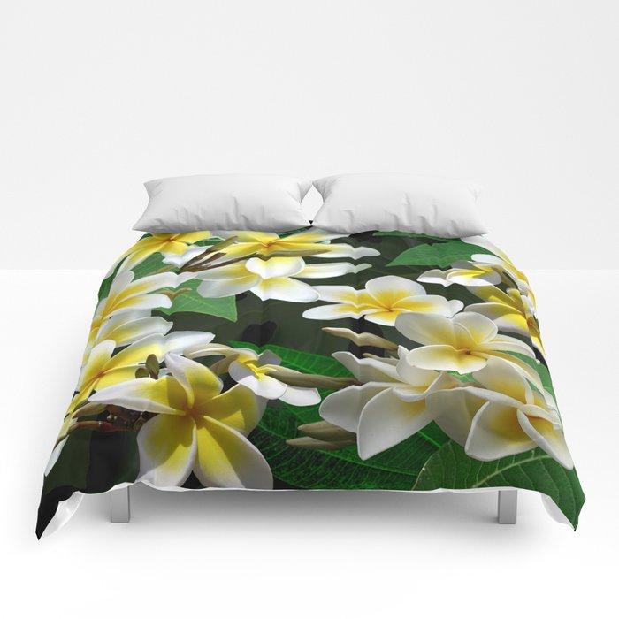 Plumeria Flowers Comforters