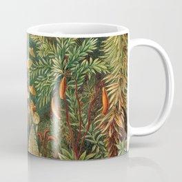 Ernst Haeckel Muscinae Microscopic Landscape Coffee Mug