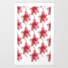 Amaryllis pattern Art Print