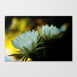 San Pedro Twin Flowers Canvas Print