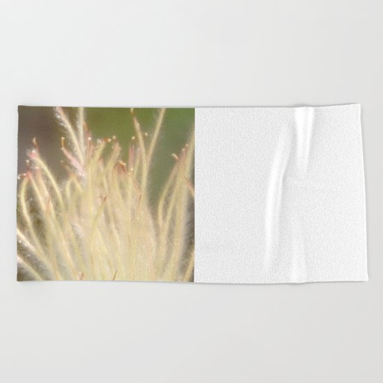 Apache Plume Beach Towel