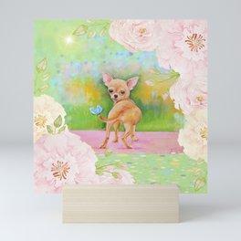 Chihuahua in the rose garden Mini Art Print
