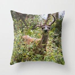 Asymmetrical Throw Pillow