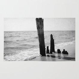 Lake Michigan Driftwood Rug