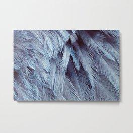 Bird Feather Art | Nursery | Wildlife | Nature Art | Home Decor Metal Print