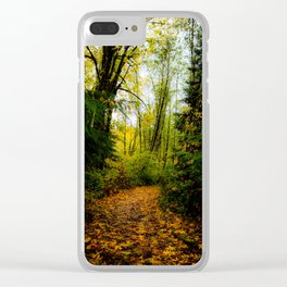 A Curve in the Path Clear iPhone Case