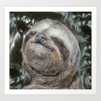 sloth Art Prints featuring Sloth by Bruce Stanfield