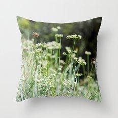 A Beautiful Day Throw Pillow