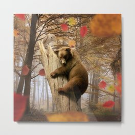 Brown bear climbing on tree Metal Print