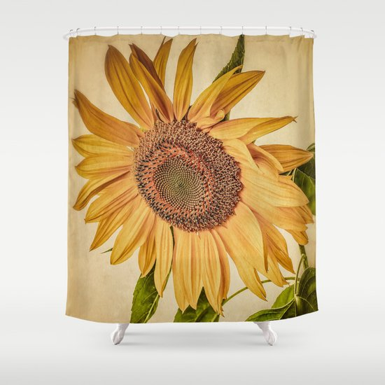 Vintage Sunflower Shower Curtain - Vintage Sunflower Shower Curtain By Edward M. Fielding Society6