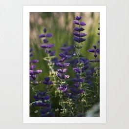 Purple Bow Ties Art Print