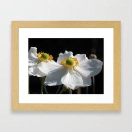 White on Black - Anemone Flowers Framed Art Print
