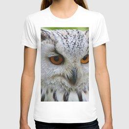 Owl | Chouette T-shirt