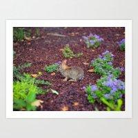 rabbit and flowers Art Print